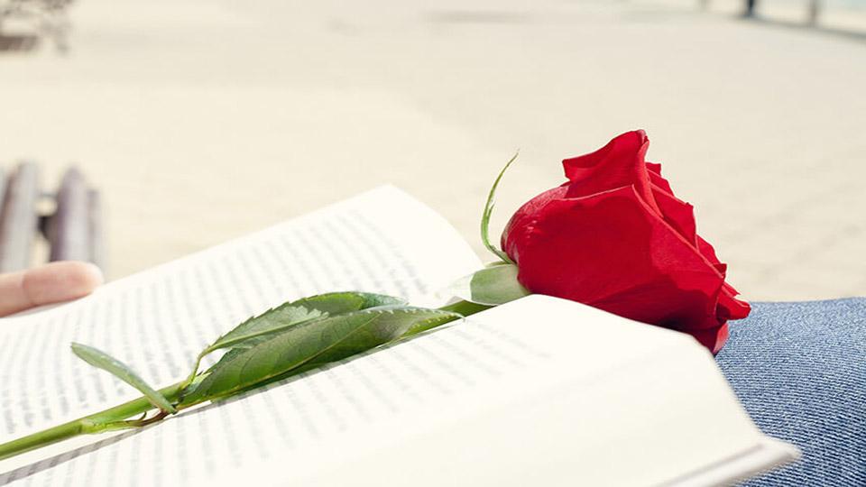 livre rose espagne