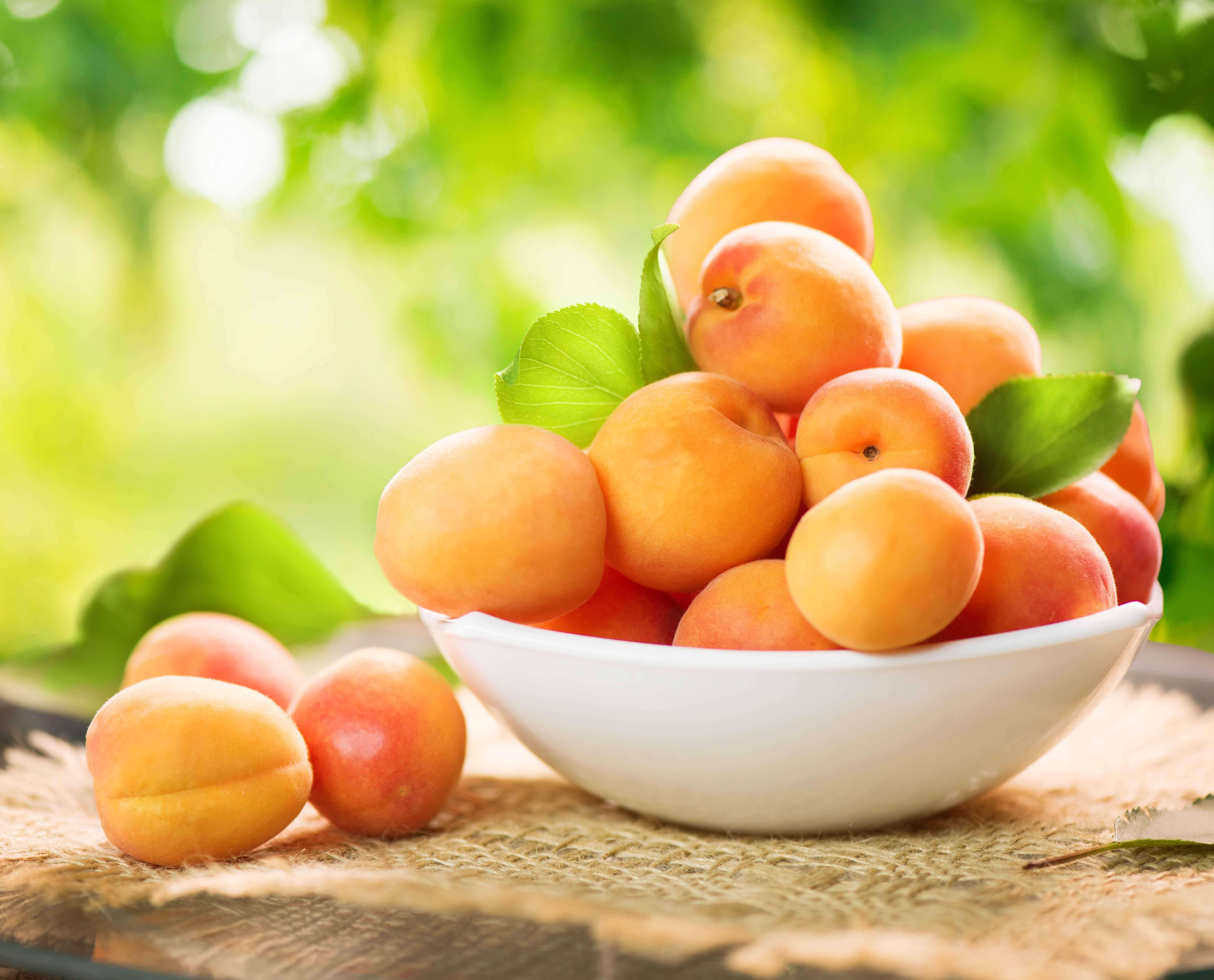 fruit abricot panier