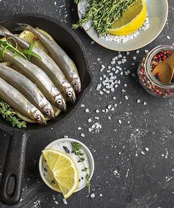 anchois spécialité catalogne