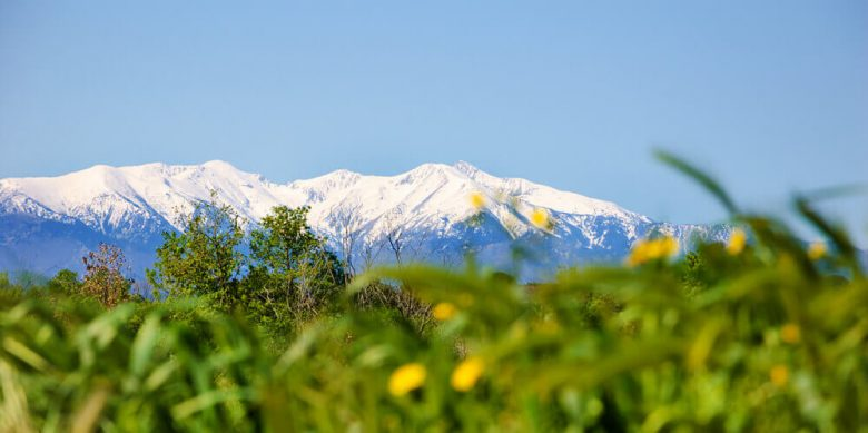 canigou nature neige montagne