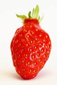 fraise fruit