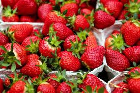 fruit fraise