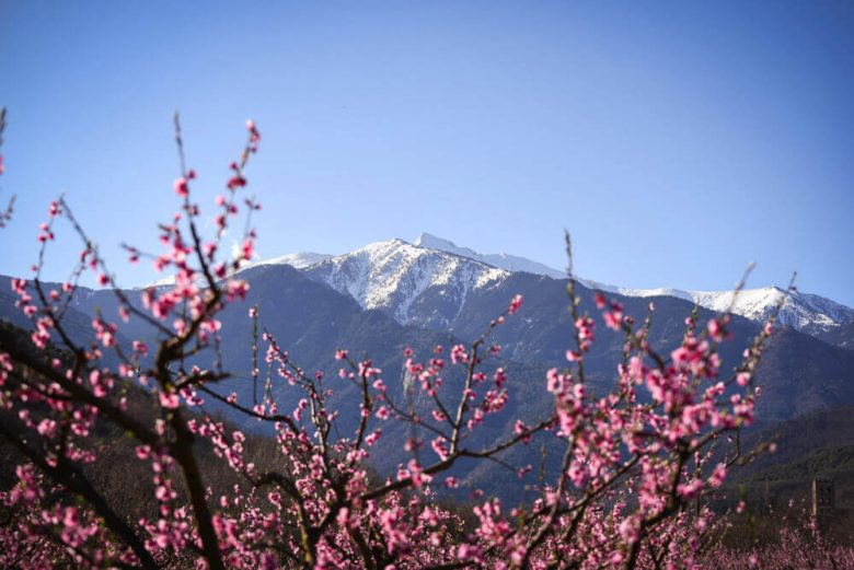 pyrénées orientales séjour vacances montagne