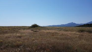 Ma larrieu réserve Argelès