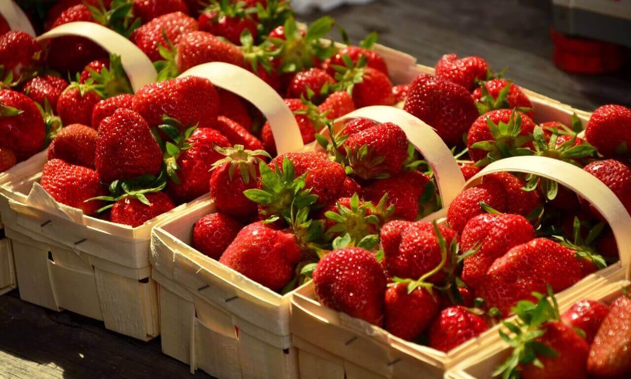 Paniers fraises