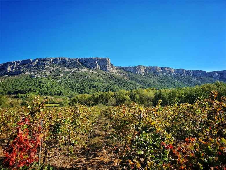 Tautavel Pyrénées Orientales