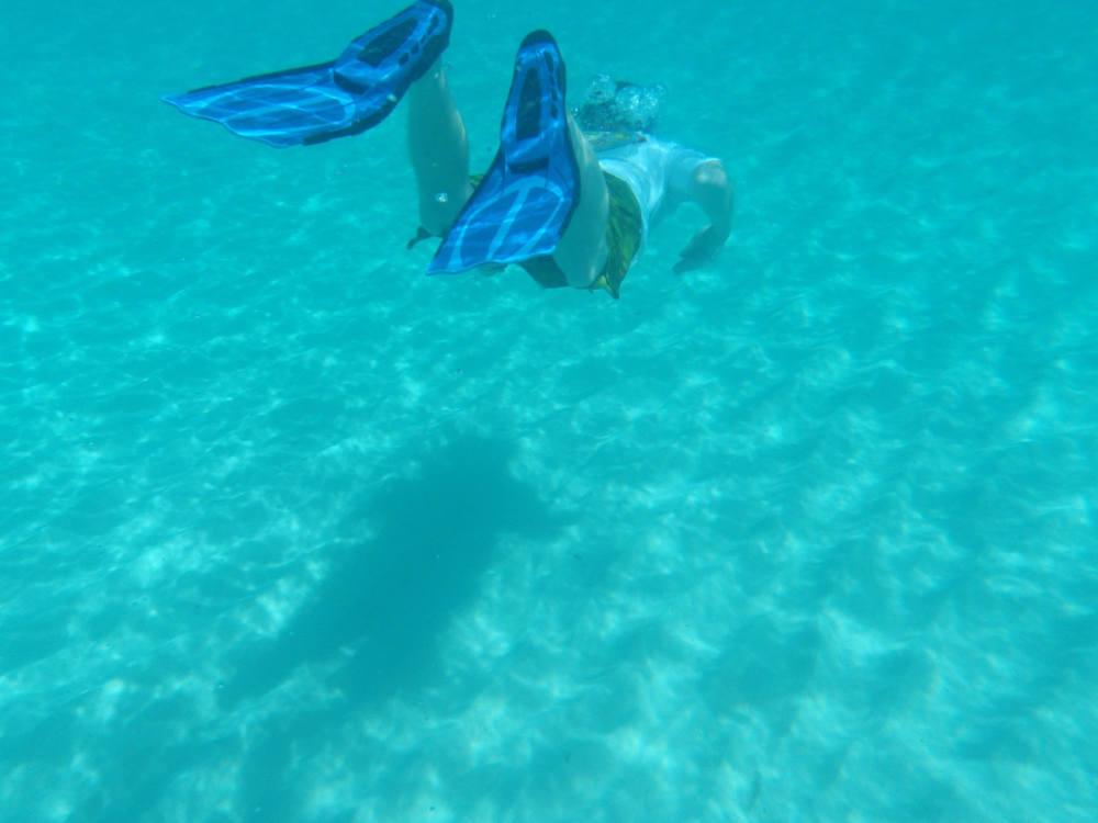 plongée pyrénées orientales vacances loisirs