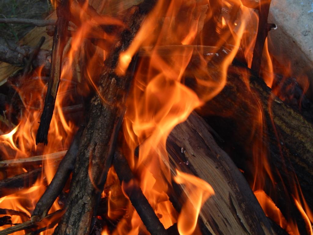 pyrénées orientales occitanie festivités traditions