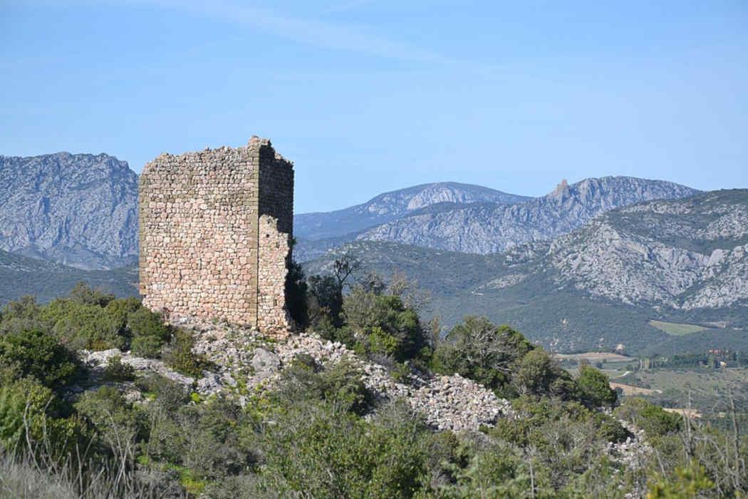 chant du coq Pyrénées orientales Pays Catalan Catalogne