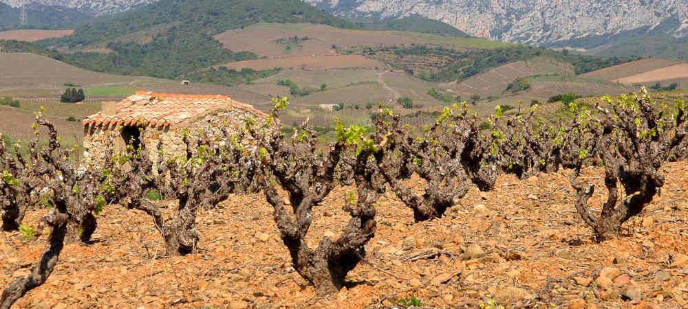 casot la vallée de l'Agly Pyrénées orientales Occitanie