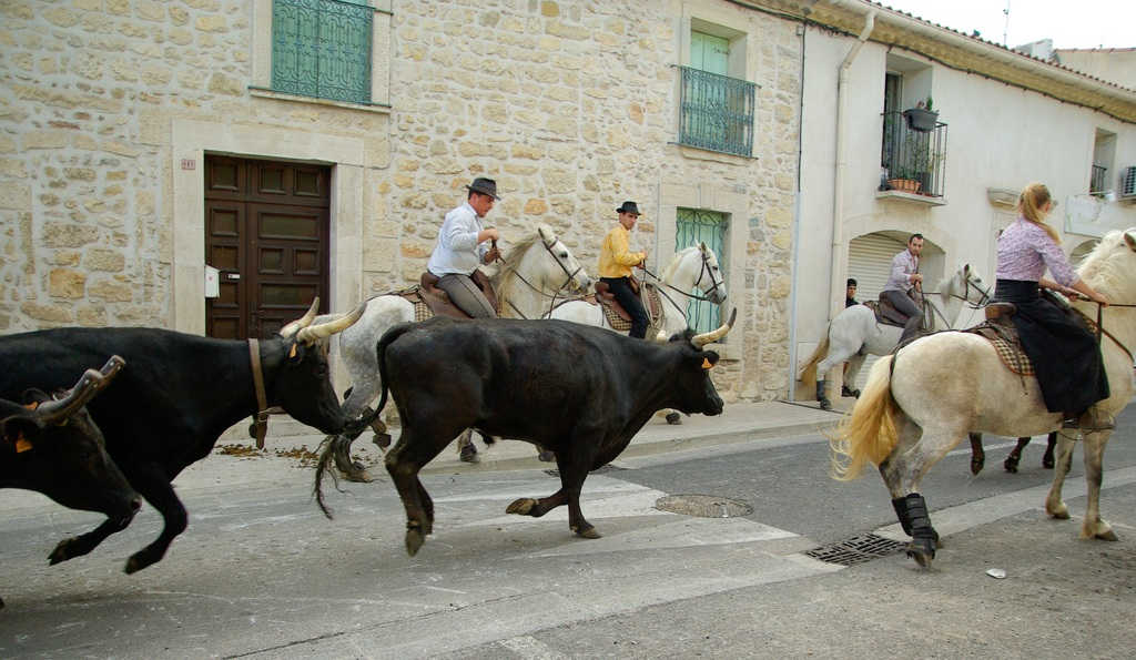 céret tradition taurine
