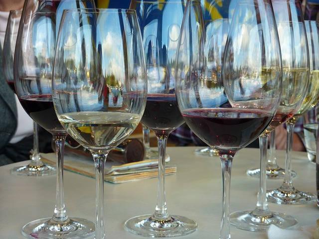 Verres dégustation de vins terroir pyrénées orientales