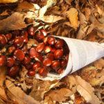 La « Castanyada », ou quand la châtaigne  célèbre l'automne et la « Tots Sants » en Catalogne