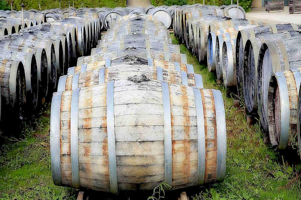 tonneaux vin catalogne rancio