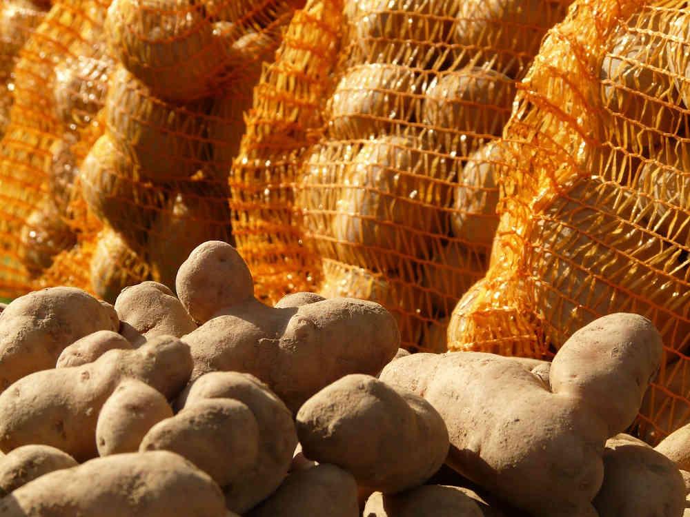 patates sachets