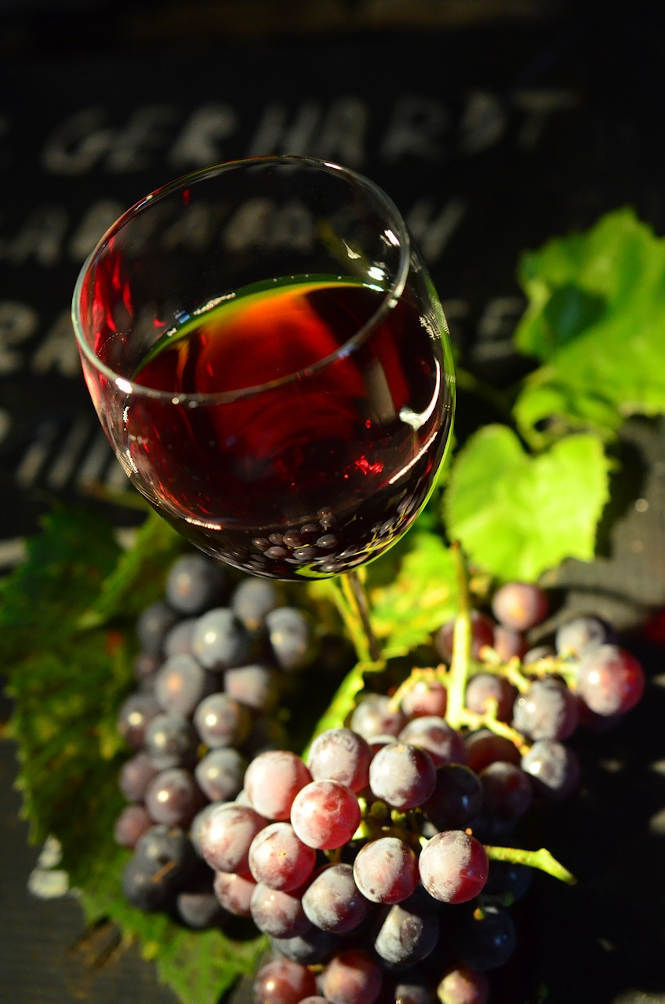 grappe raisins vin dégustation balade vignerone PO