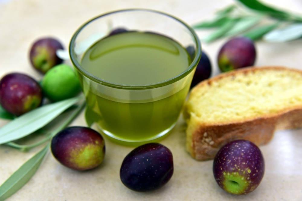terroir catalan huile d'olive nouvelle