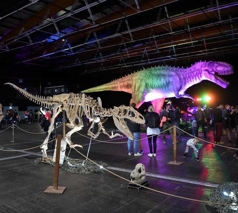 exposition dinosaures pyrénées orientales perpignan