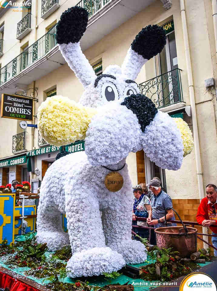 weekend festif pays catalan tradition occitanie