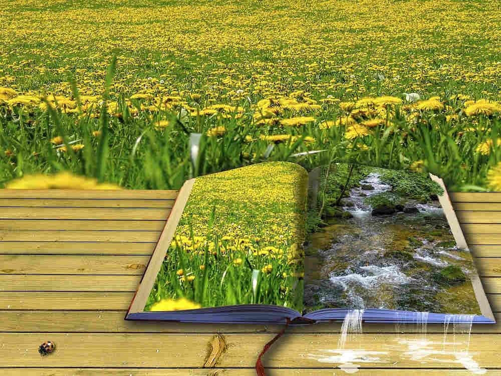 événement occitanie perpignan printemps des poètes