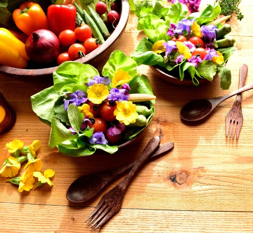 pyrénées orientales atelier gastronomie nature