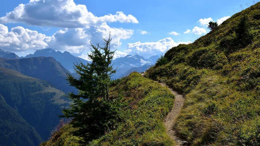 trail pays catalan po nature montagne paysages