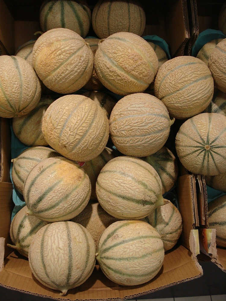 melon vrac produits locaux