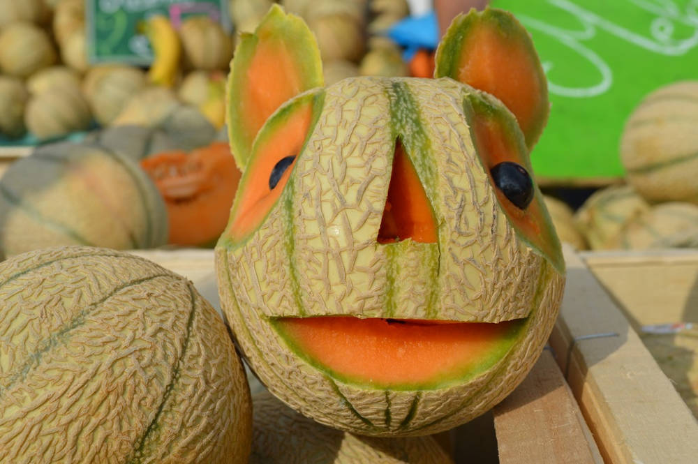 melon fun