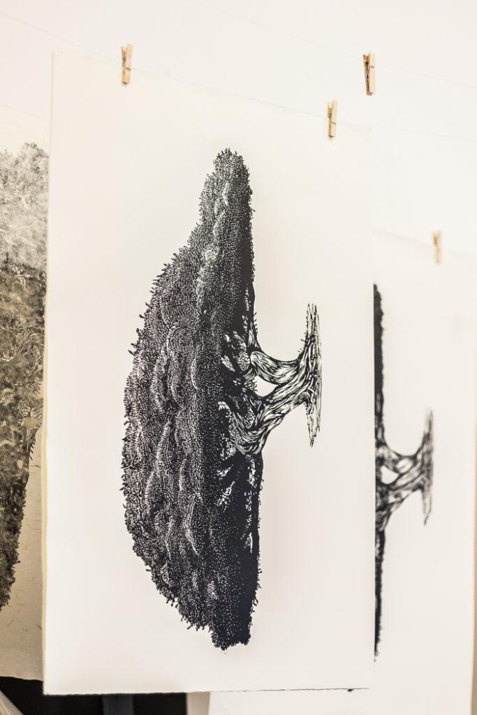 Linogravure représentant le vieux génévrier d'Opoul