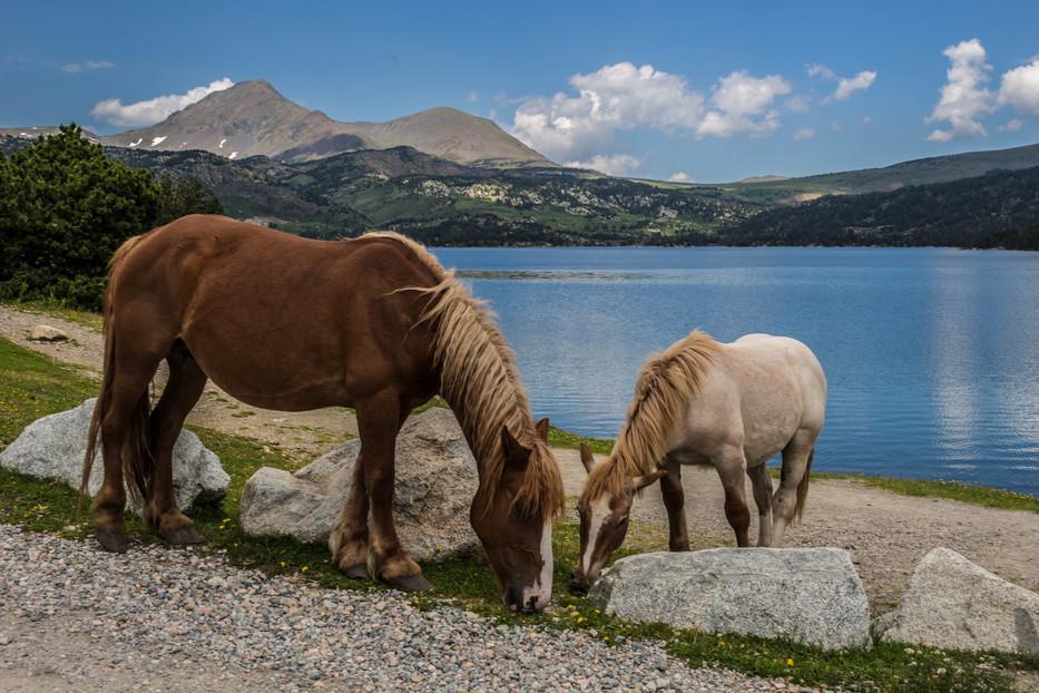 lac des bouillouses en Pyrénées-Orientales