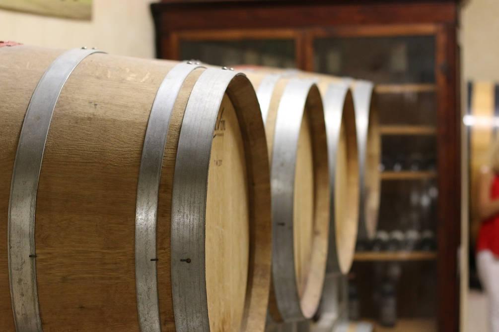 vin oenologie balade vignes pyrénées orientales
