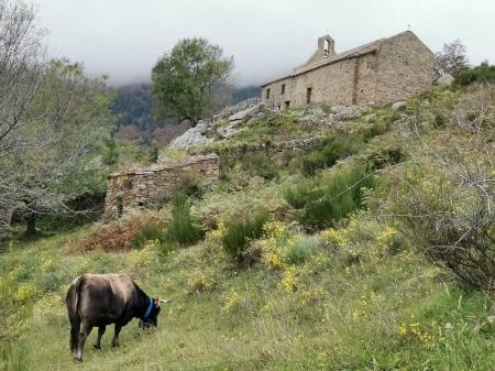 nature montagne Pyrénées Orientales