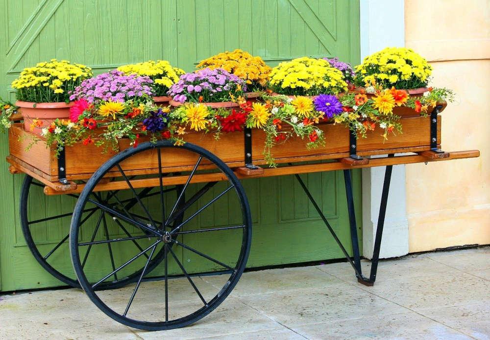 marché producteur pépinieristes fleuristes