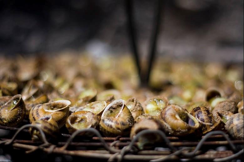 Escargot Pays Catalans festivités