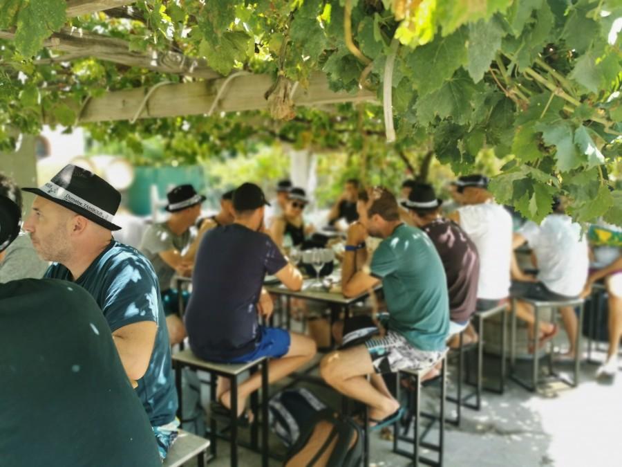 banyuls sur mer repas domaine viticole