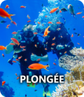 minia-plongee