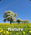 nature-minia